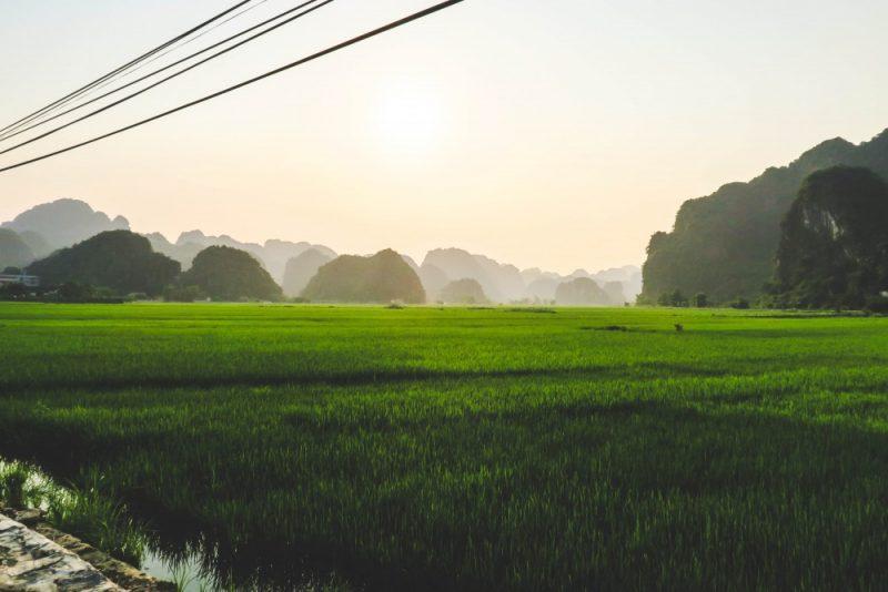 Elio Heres Ninh Binh-7